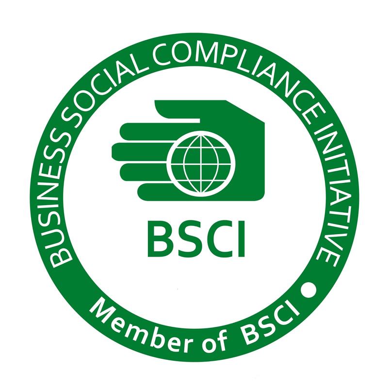 Tư vấn trách nhiệm xã hội BSCI